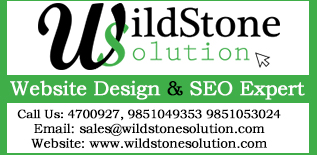 Wildstone Solution